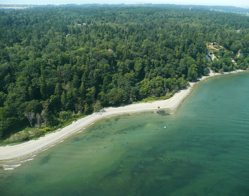 East End shoreline of Lily Point Marine Park